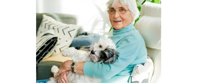 Smart Home Security in the Face of Alzheimer's Disease and Dementia