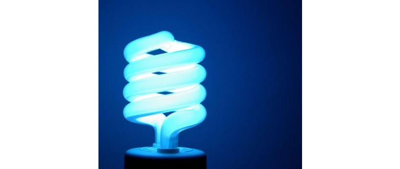 How Do Smart Light Bulbs Work & How Do You Use Them?