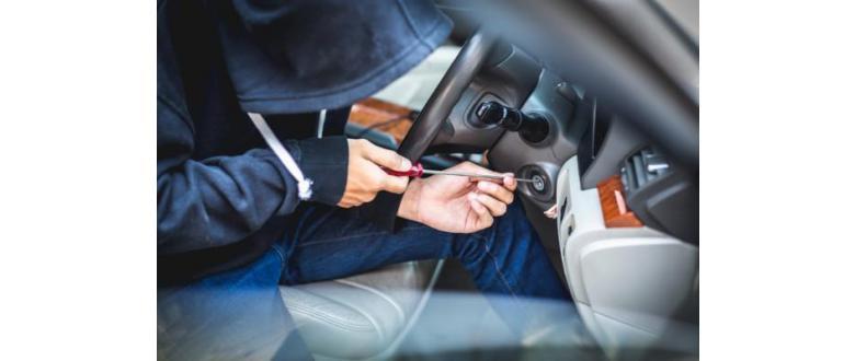 Security Cameras and Car Theft Prevention